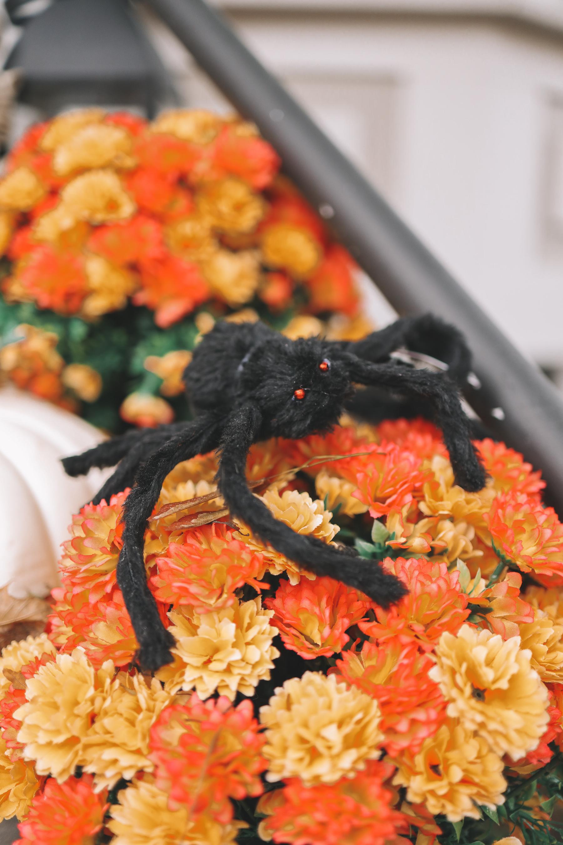 Our Halloween Decor