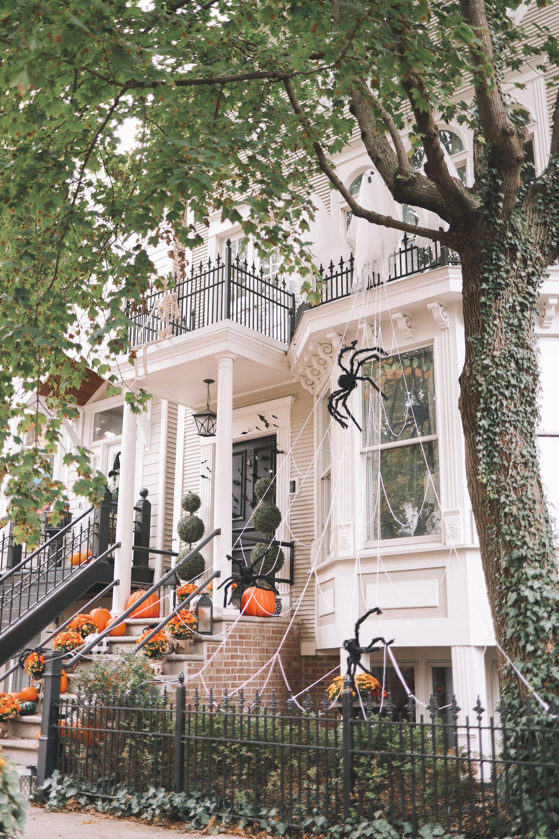 spooky and pumpkin theme