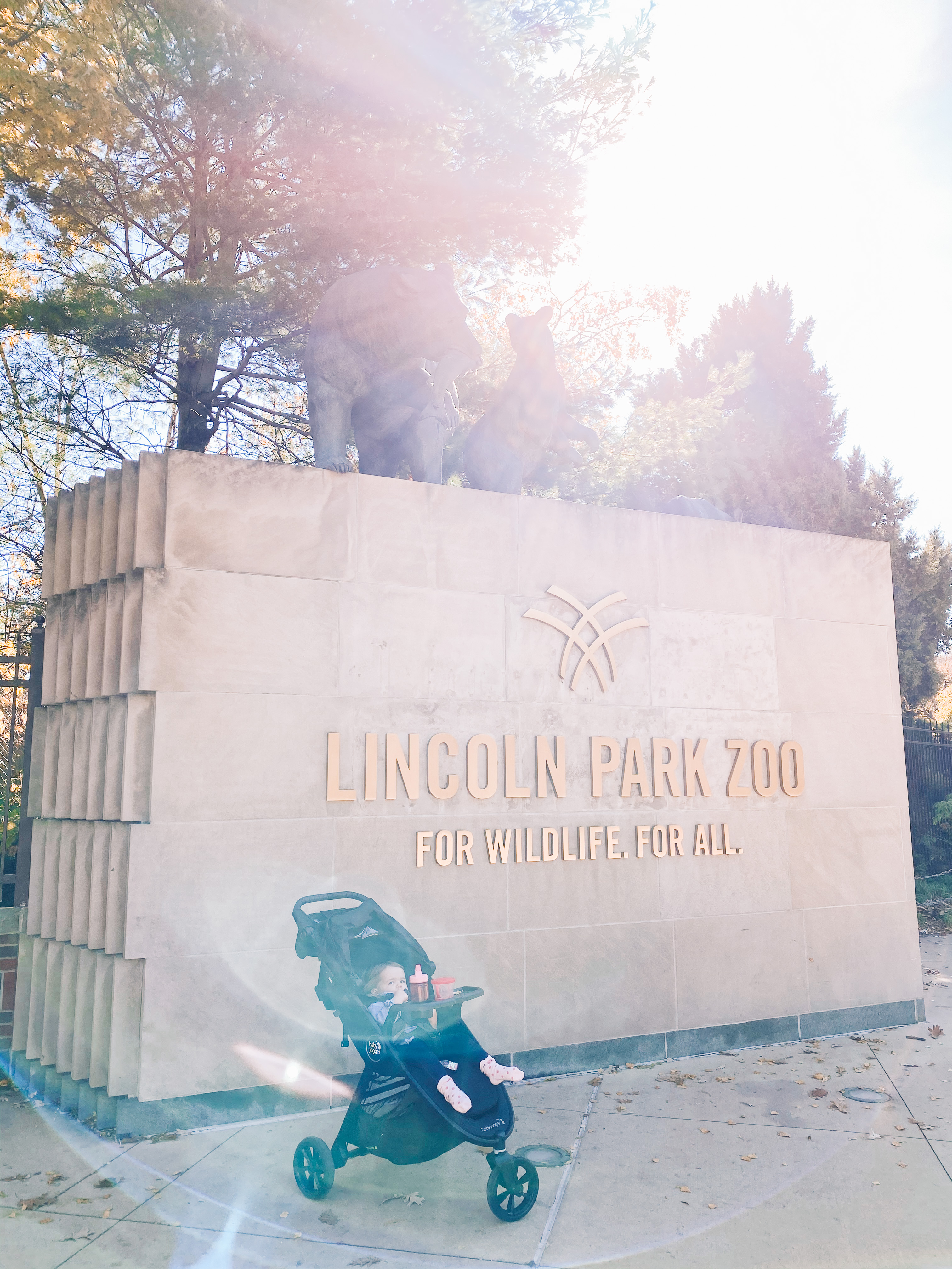 Took Lucy to the Lincoln Park Zoo