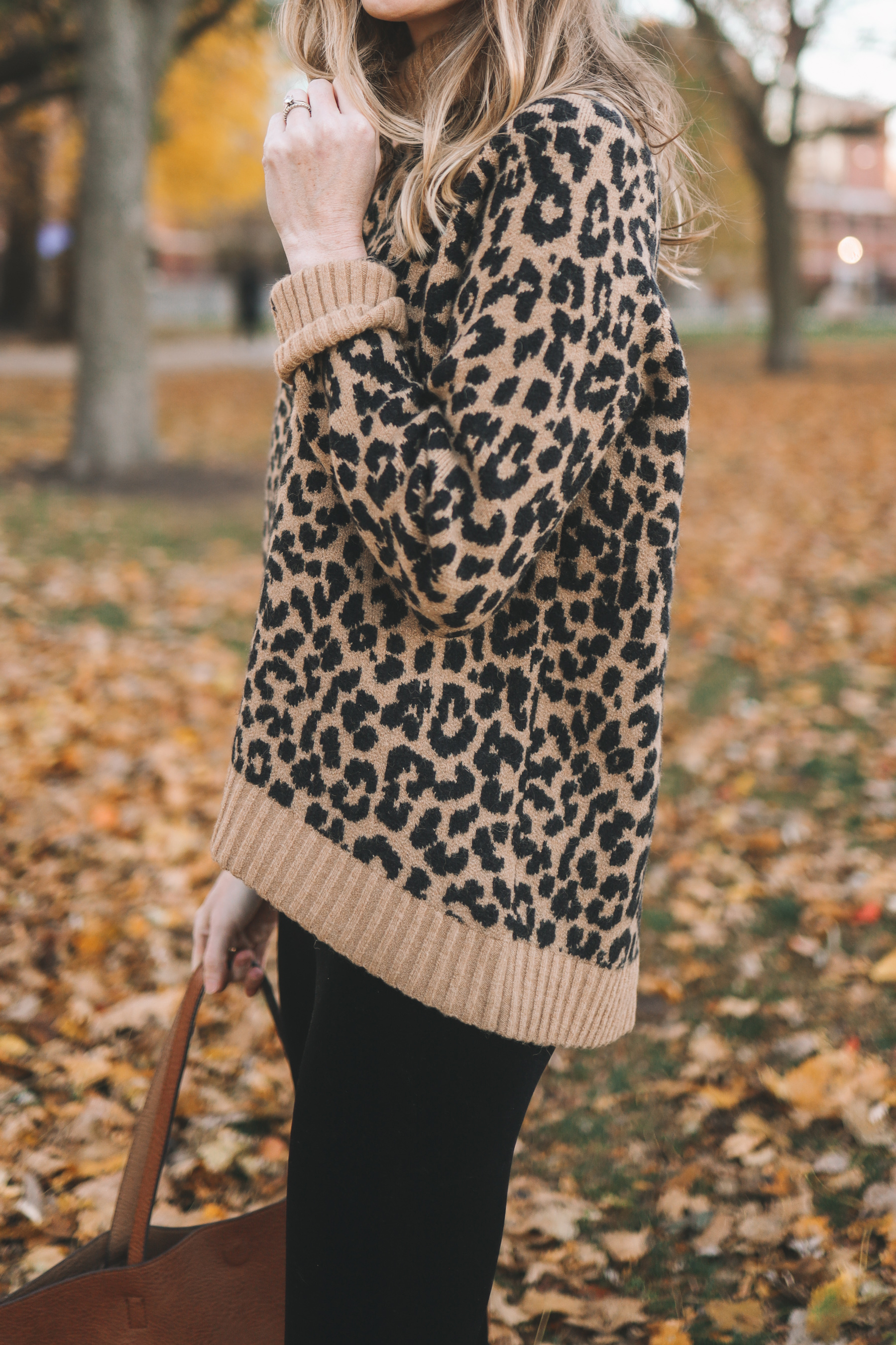 Supersoft Leopard Sweater
