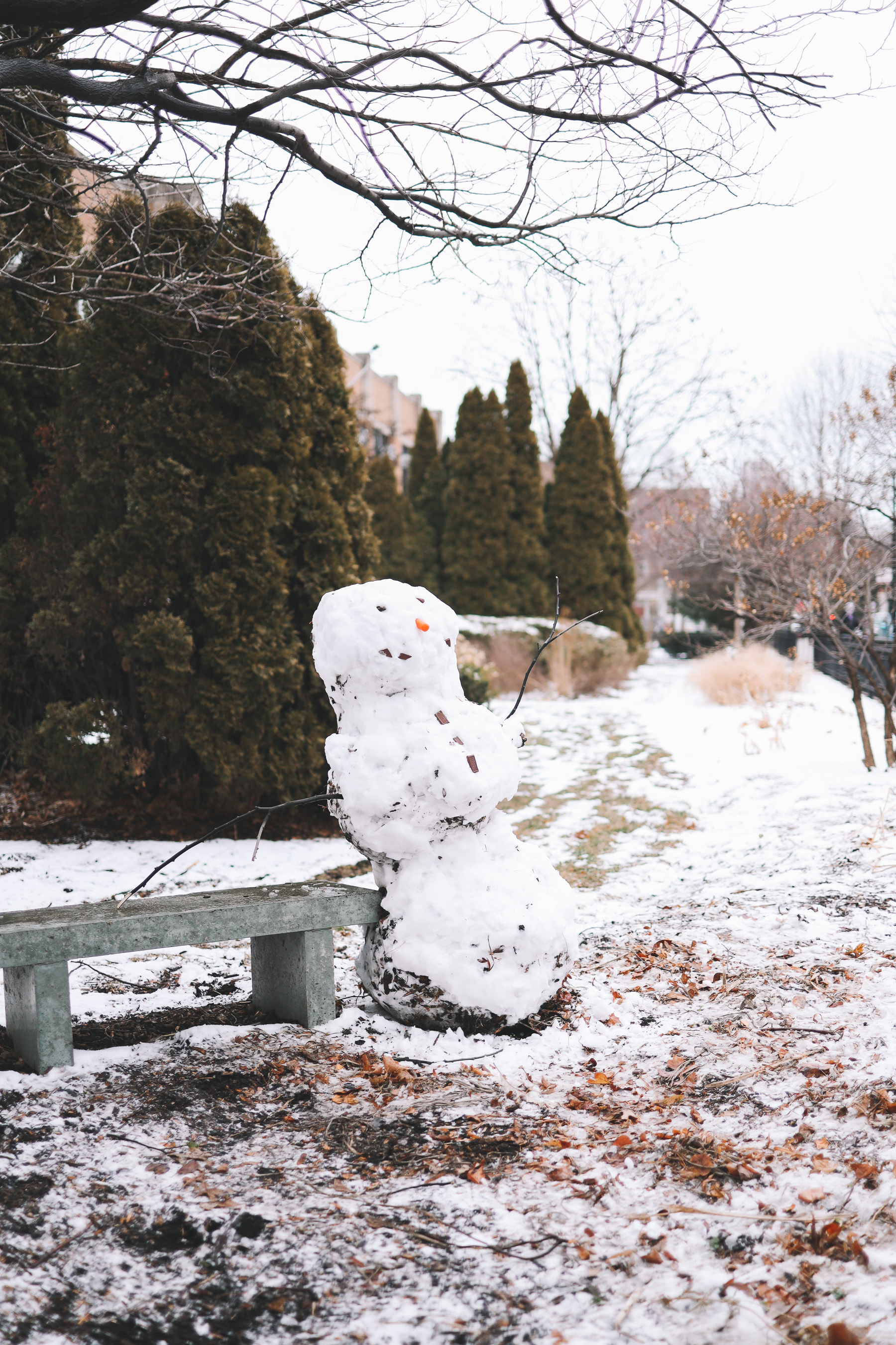 snowman in chicago