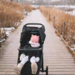 A Recent Walk Through Lincoln Park