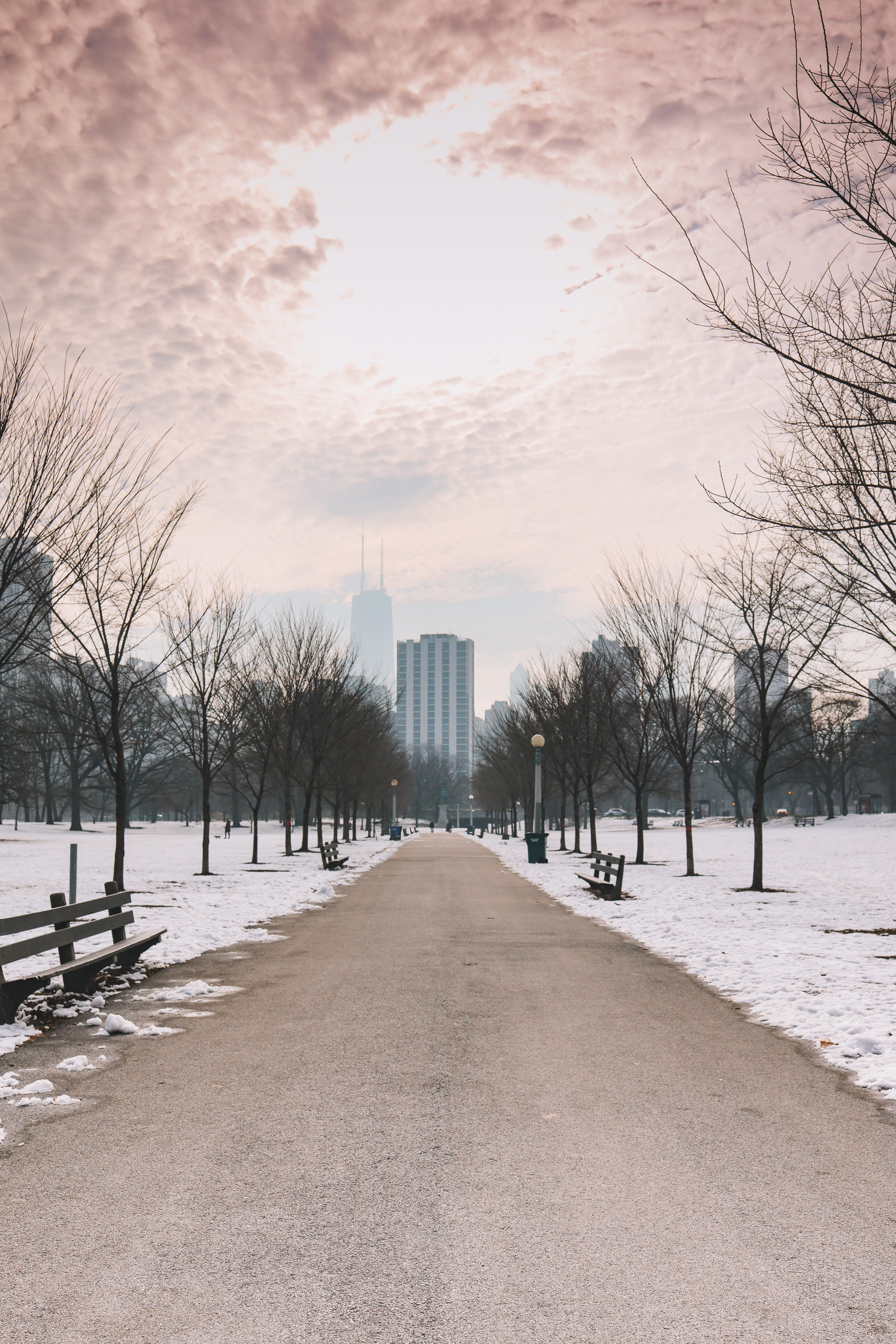 Lincoln Park in winter