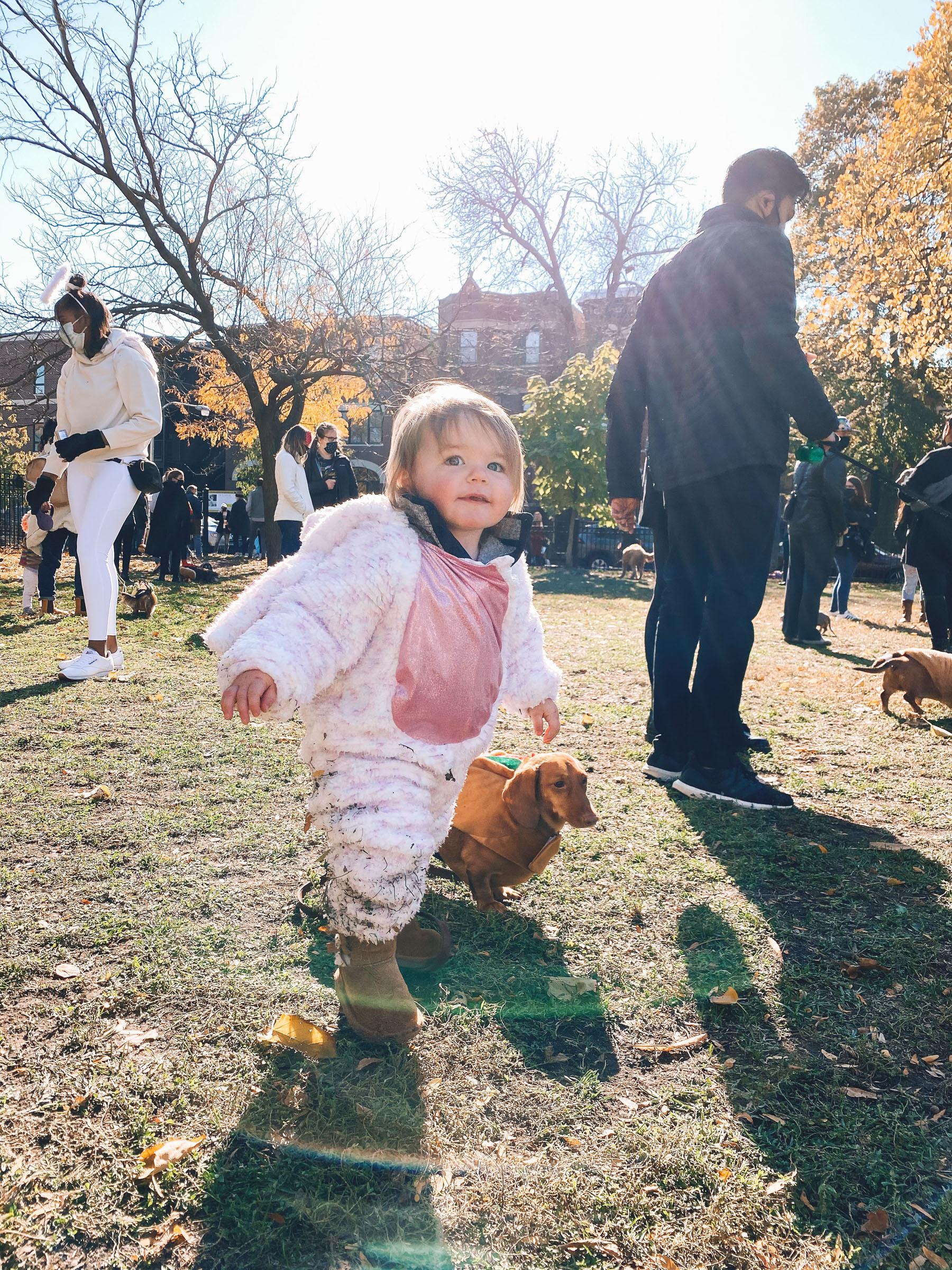 wicker park chicago | Chicago Halloweenie Walk