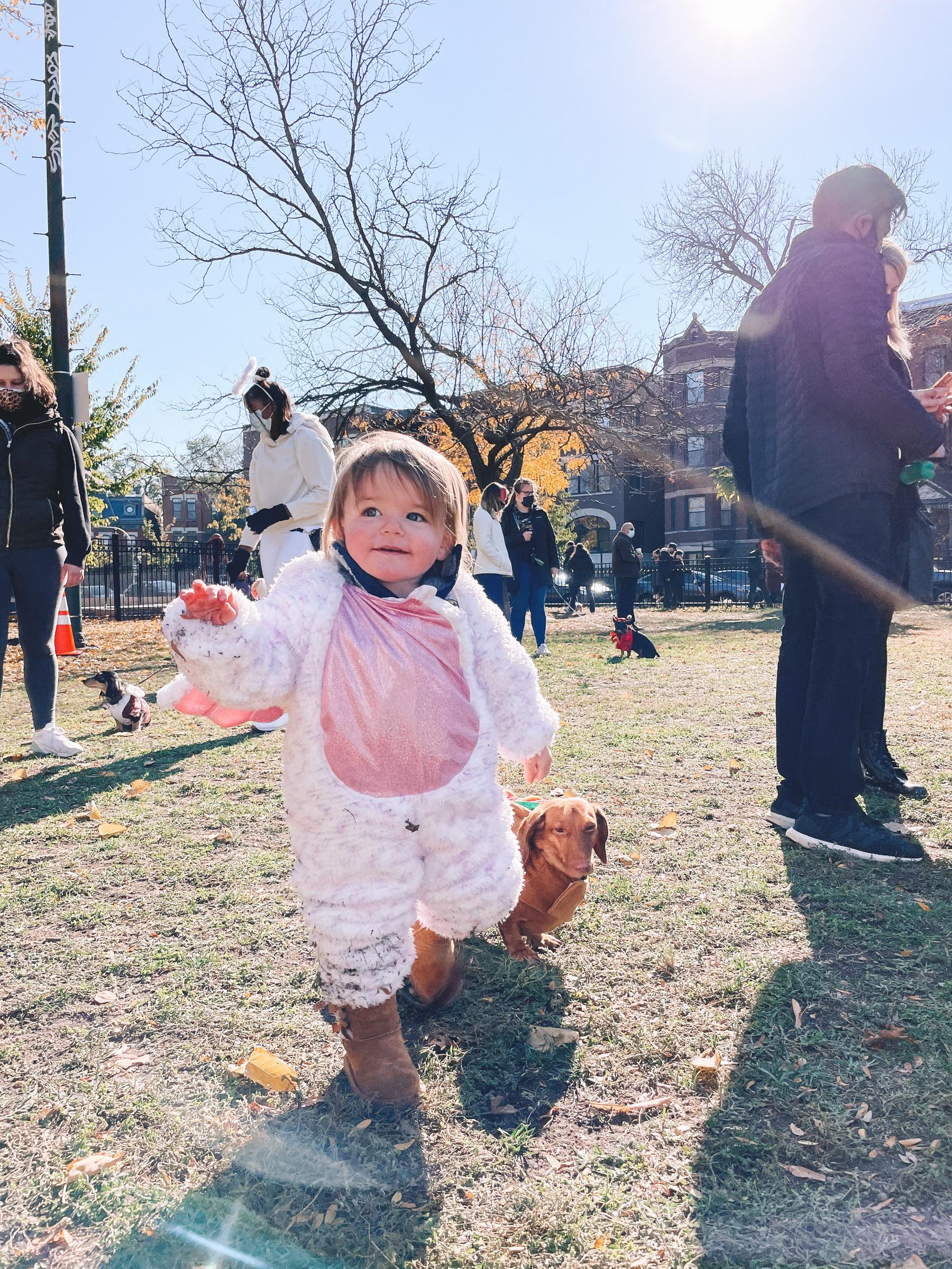 baby halloween costume | Chicago Halloweenie Walk
