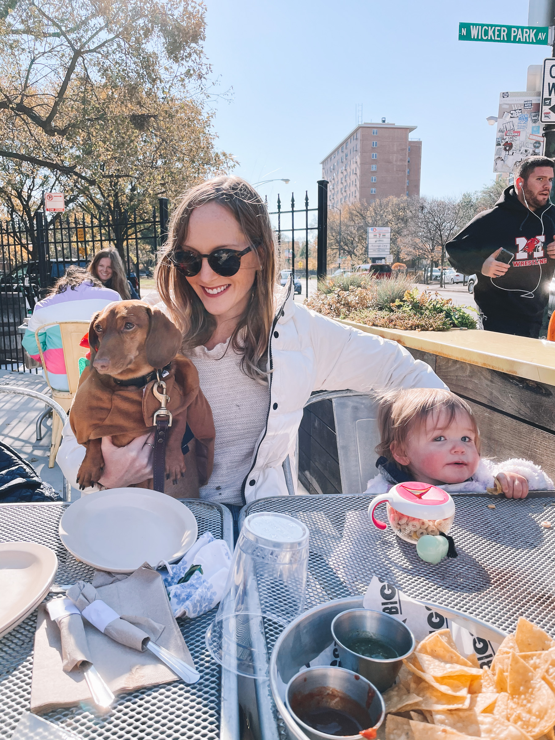 family and dachshund