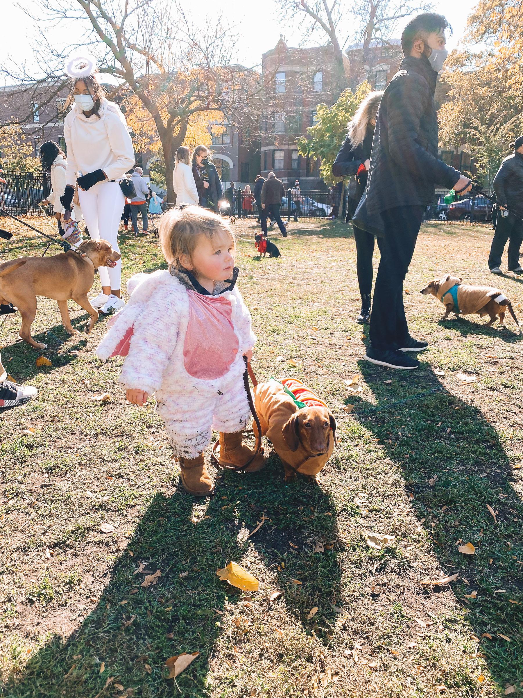 baby in unicorn costume | Chicago Halloweenie Walk