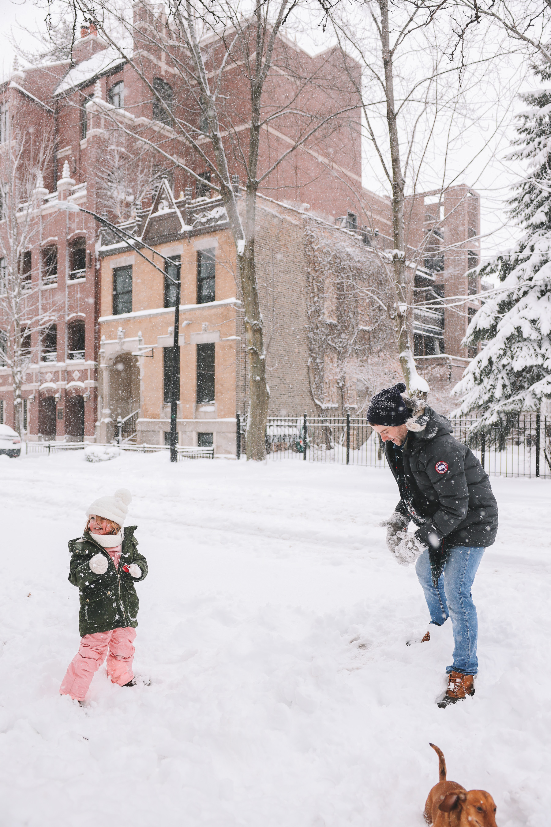 snowball fight | My new lens