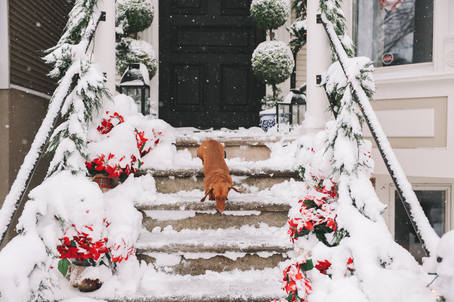 chicago house snow