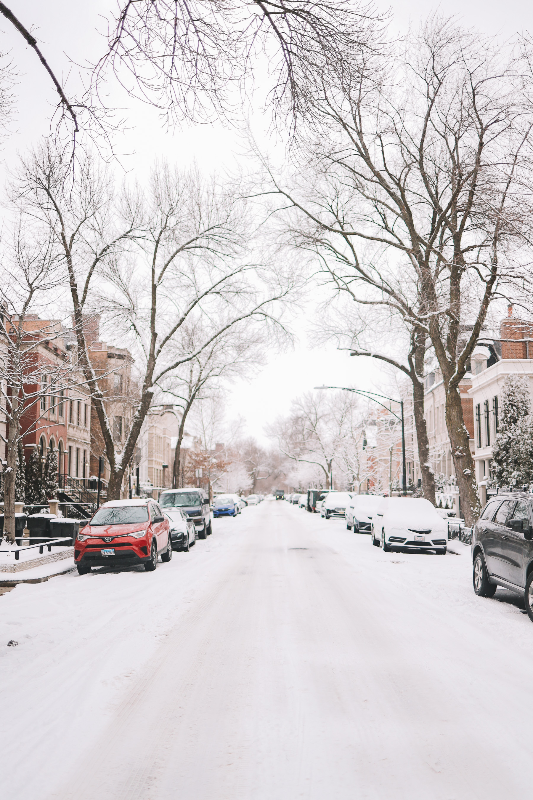 winter in chicago streets | Happiness Walk Through Lincoln Park