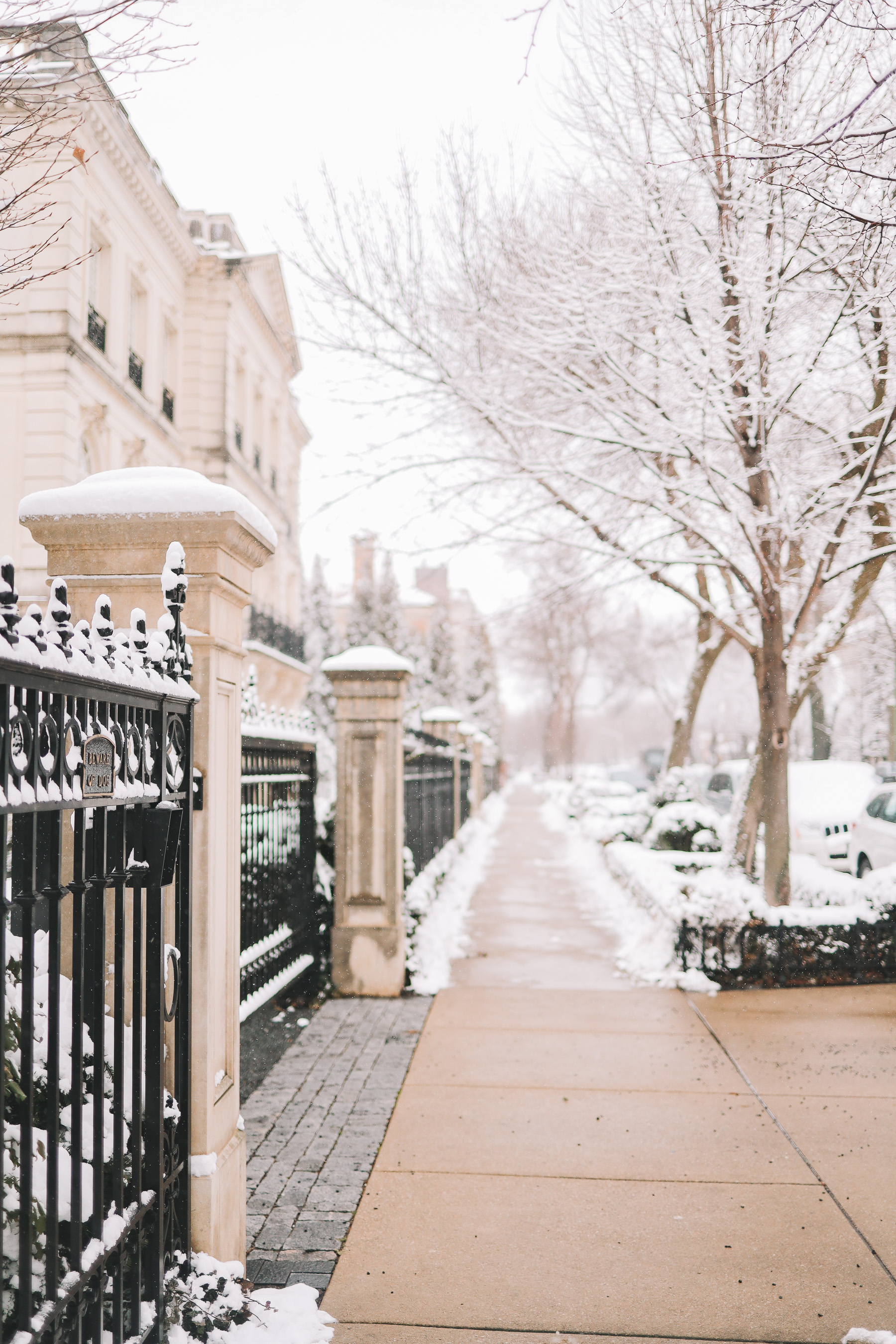 Lincoln Park chicago winter | Happiness Walk Through Lincoln Park