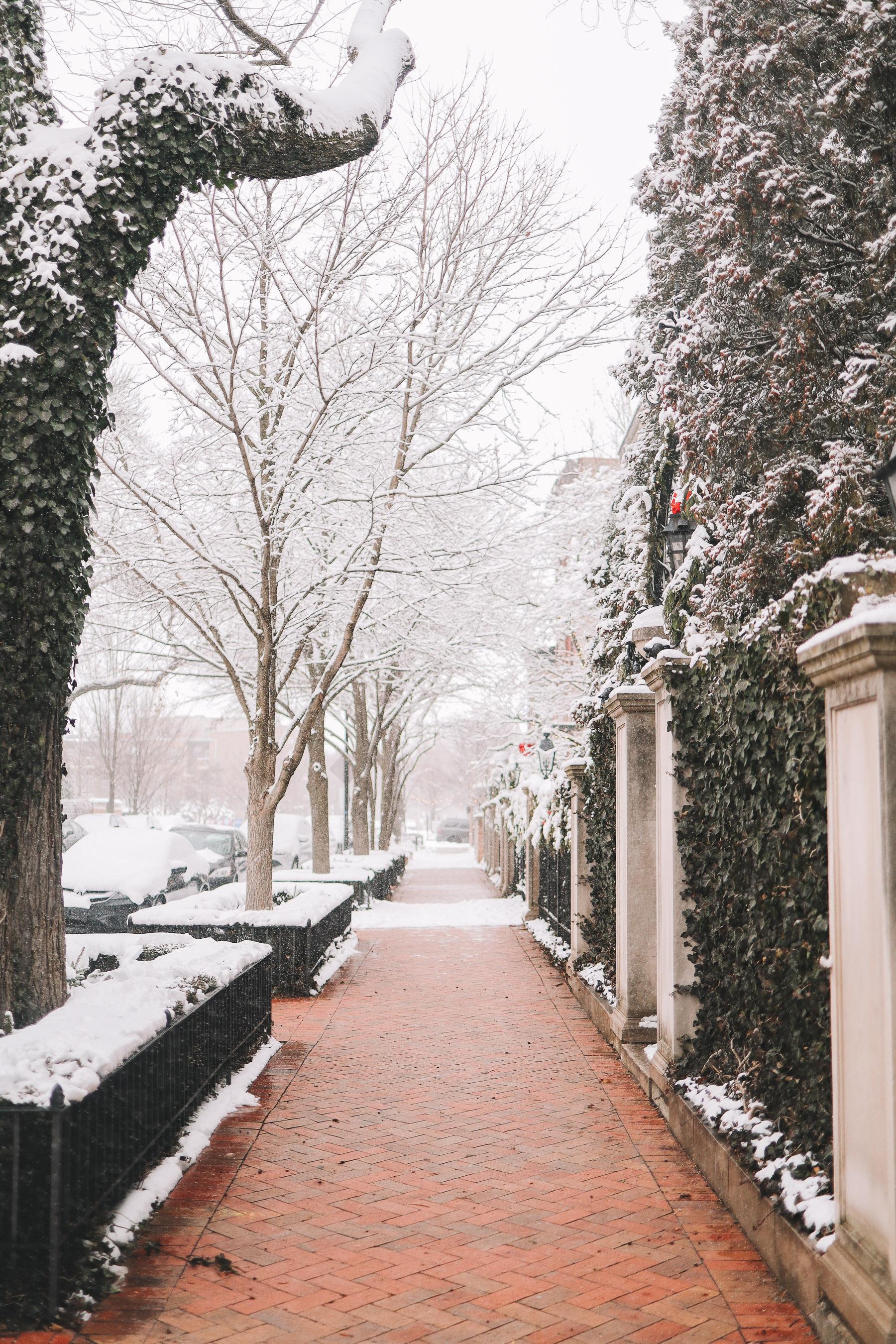 Lincoln Park chicago neighborhood snow