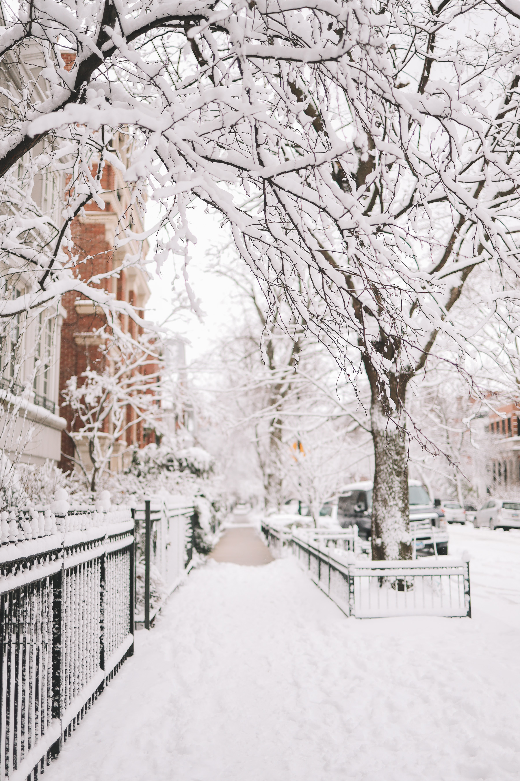Happiness Walk Through Lincoln Park | chicago snow