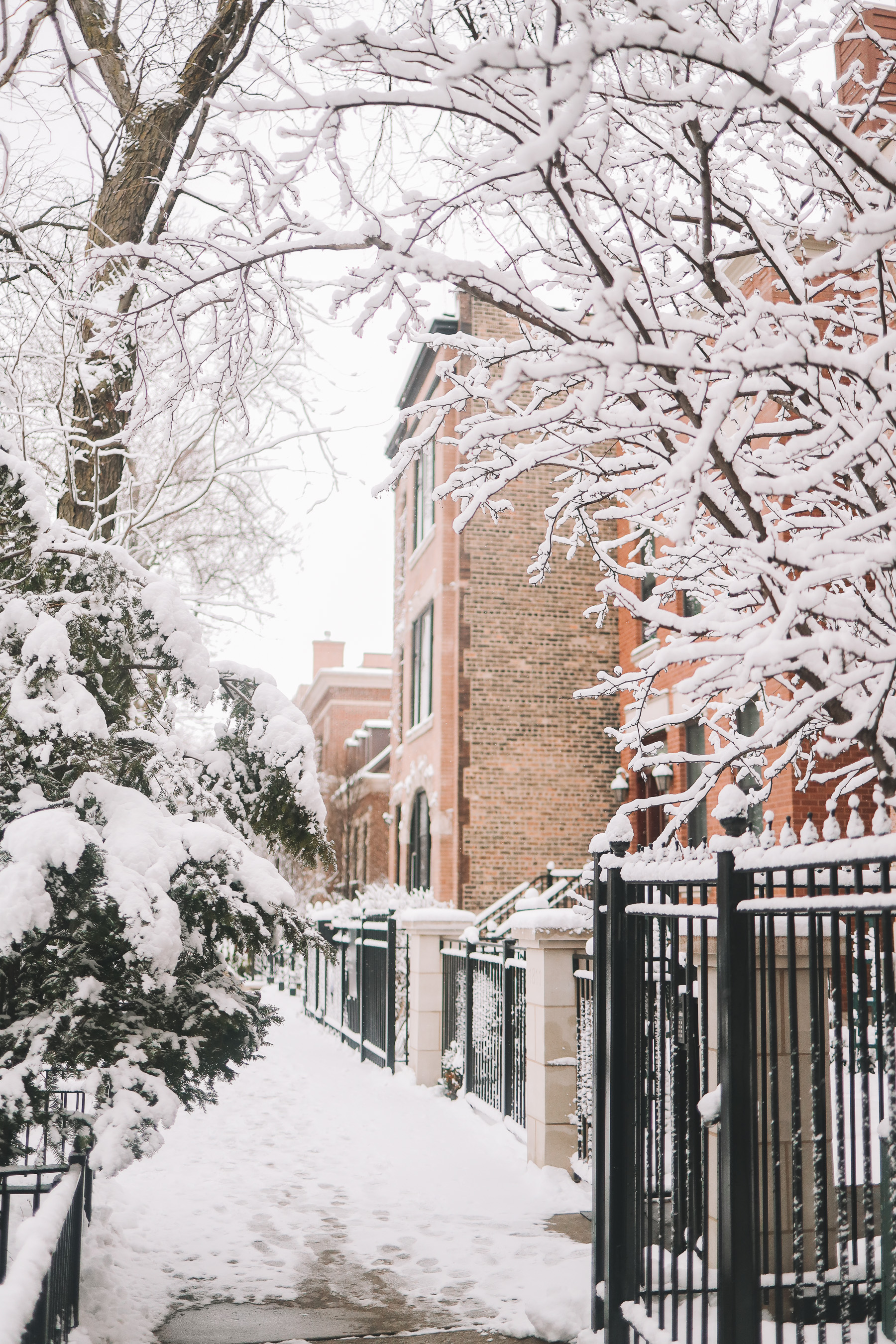 snow in chicago streets