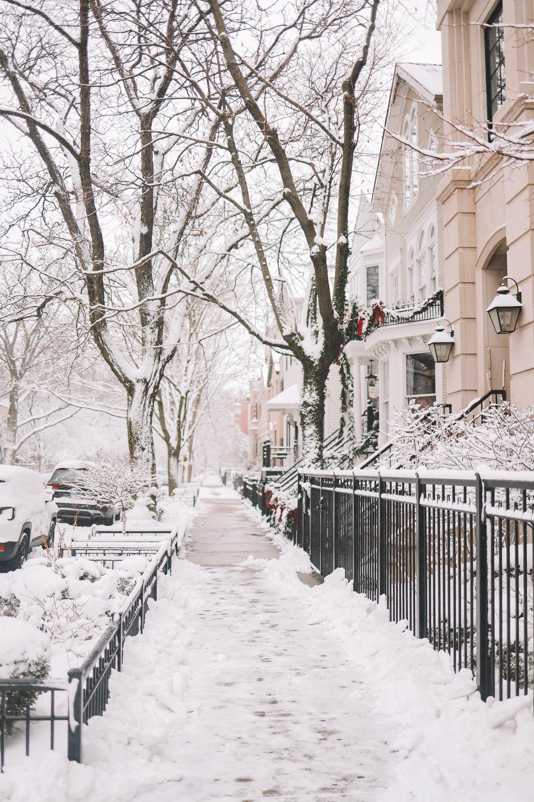 winter in chicago neighborhood