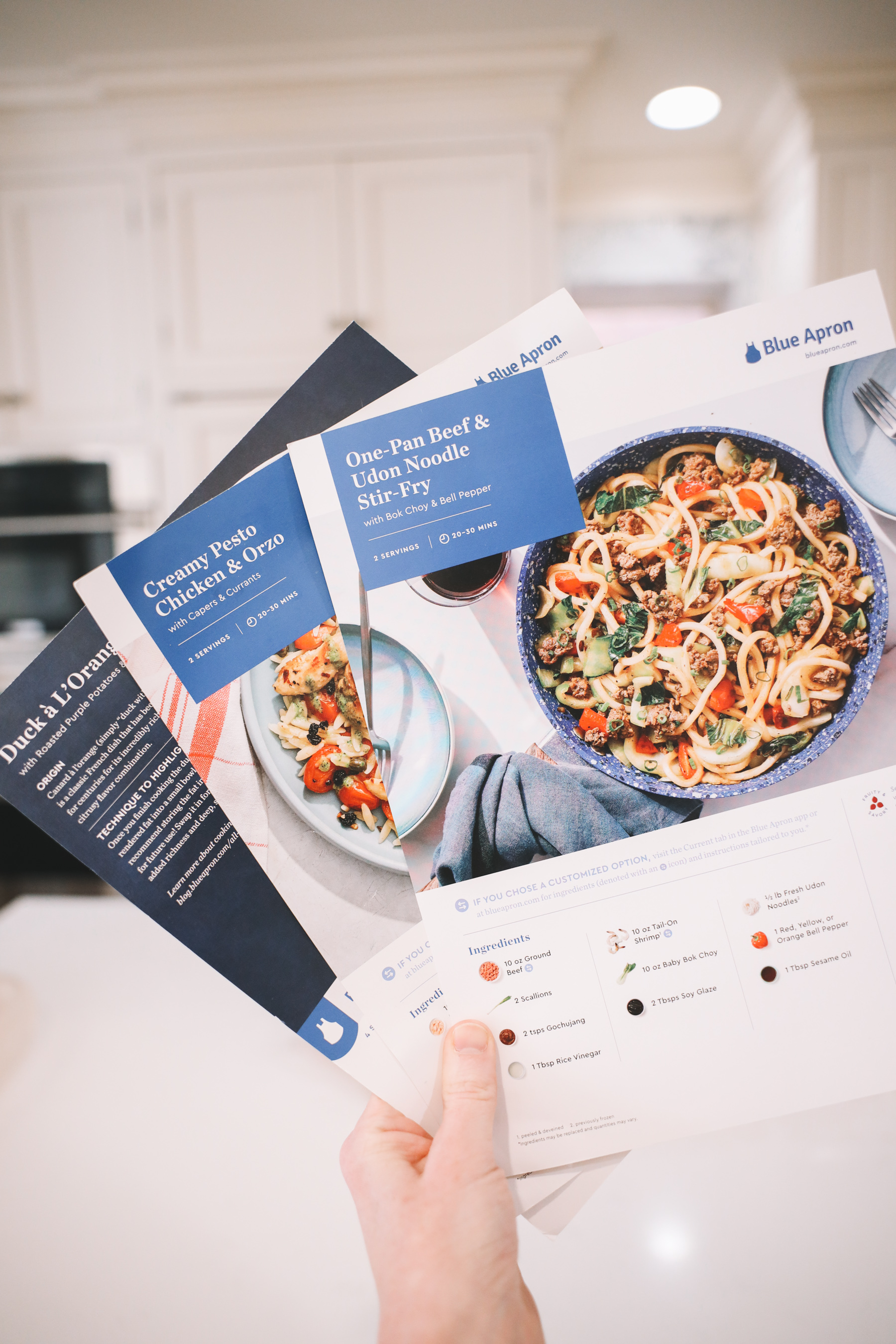 Kelly in the City + Blue Apron Offer recipes