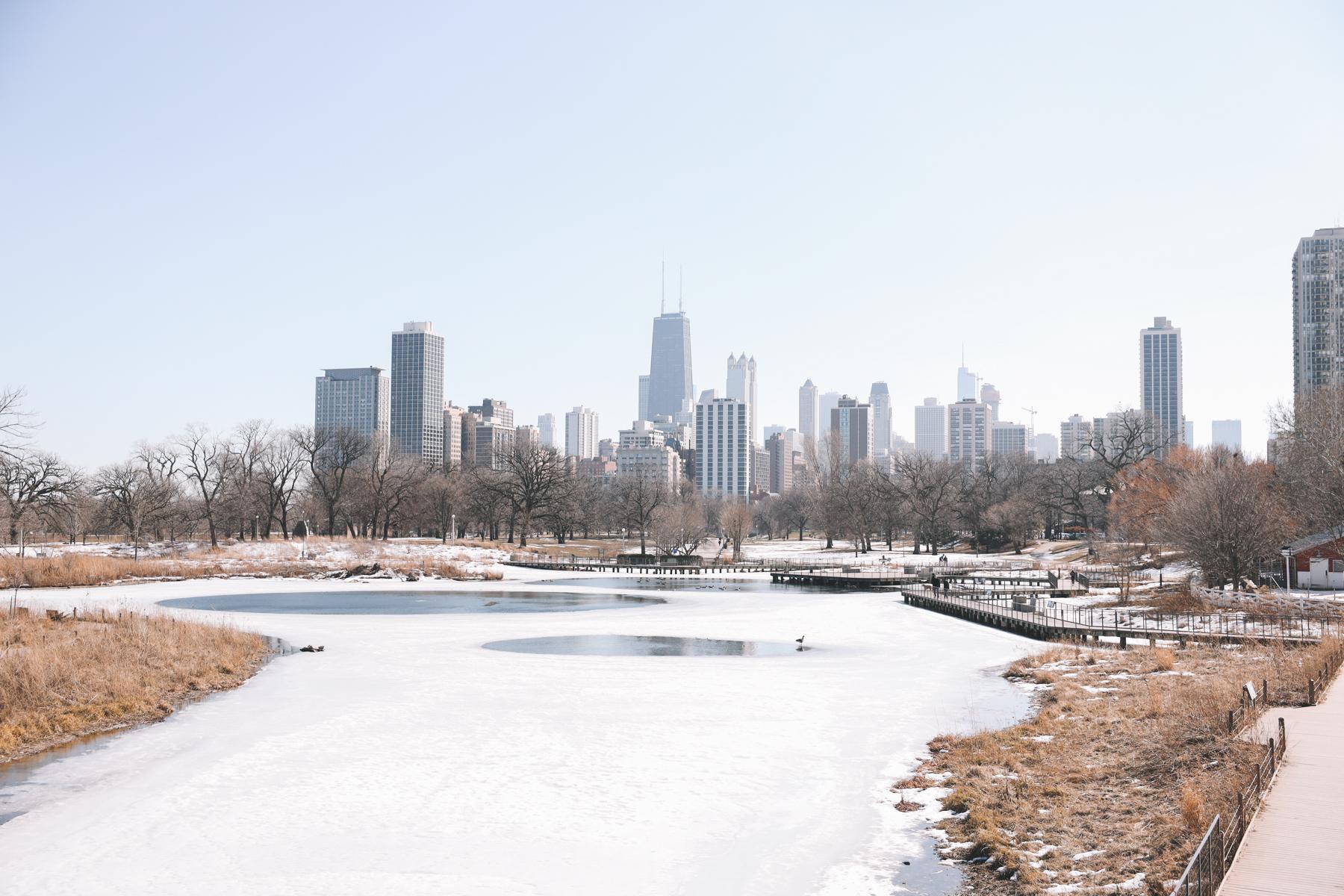Chicago lake day walk