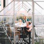 Aba Greenhouse Rooftop Dinner