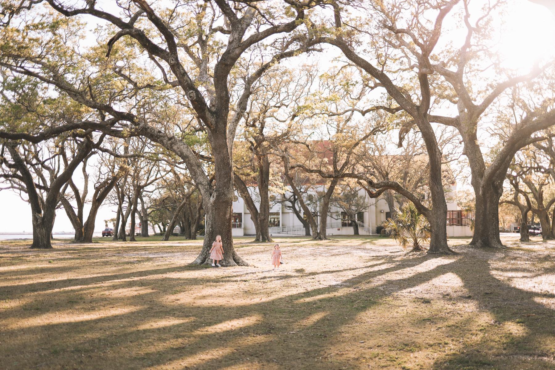 kids under oak trees