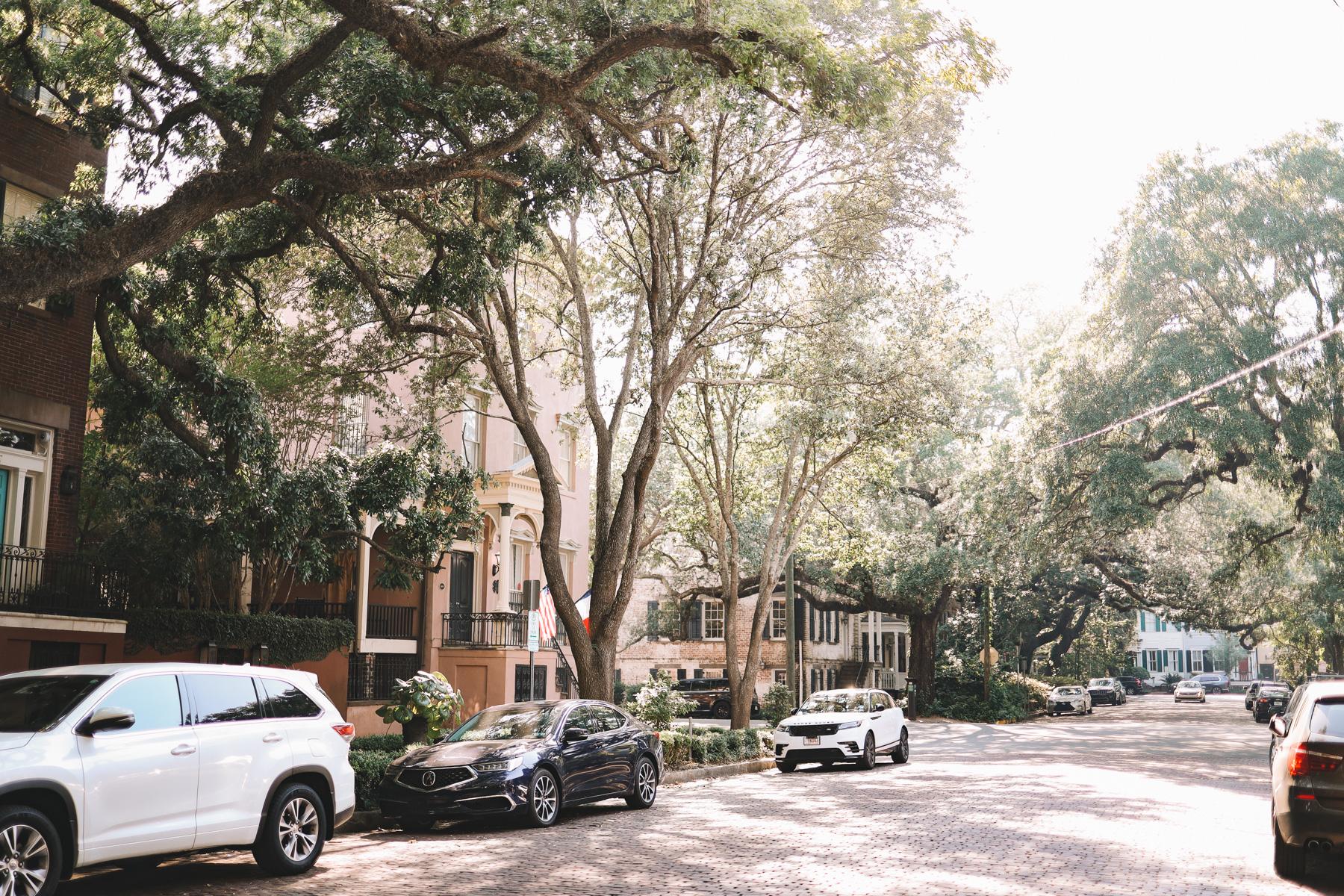 Savannah travel itinerary
