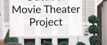 Mitch's Outdoor Movie Theater Project