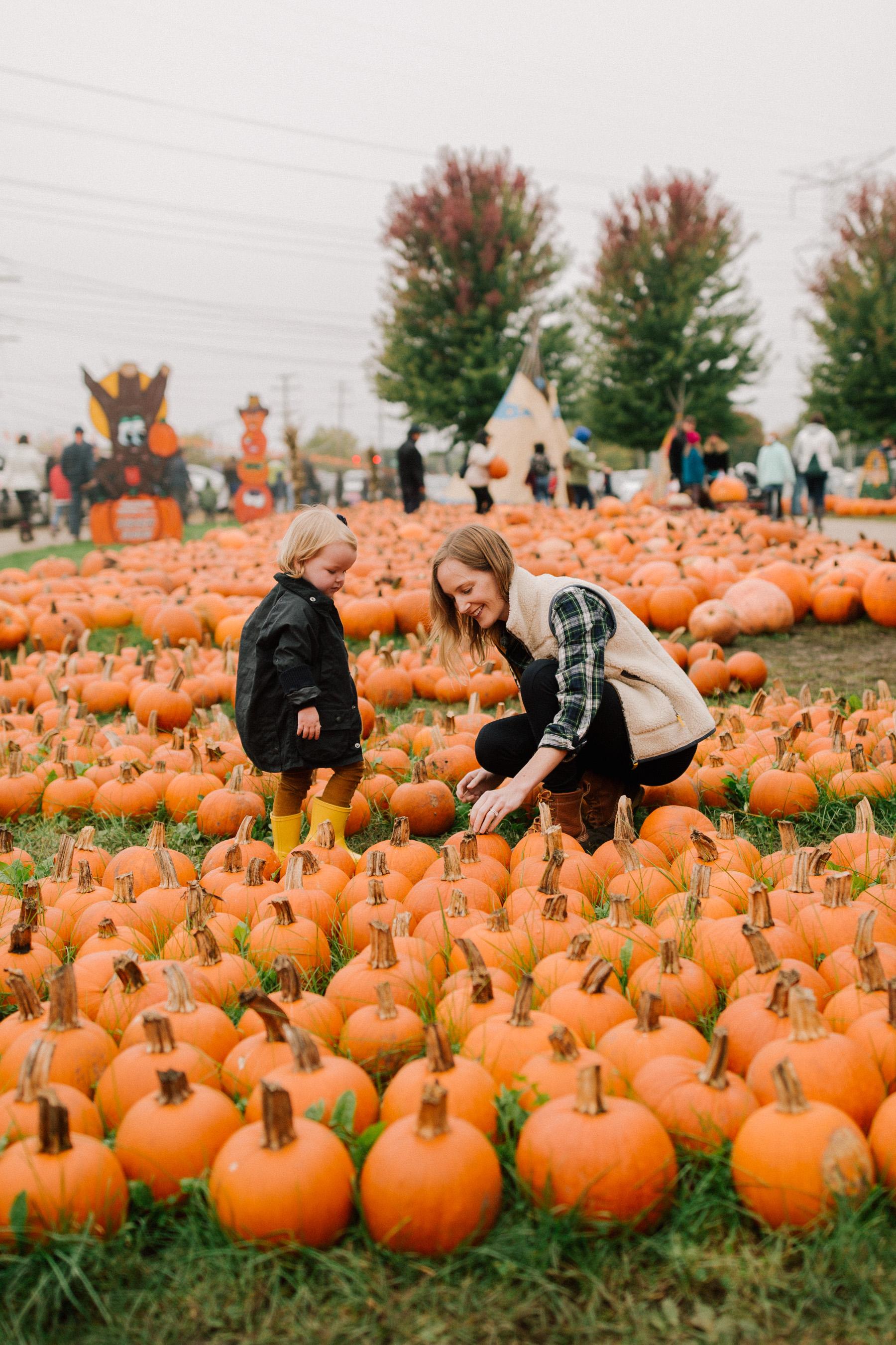 Toddler fall activities