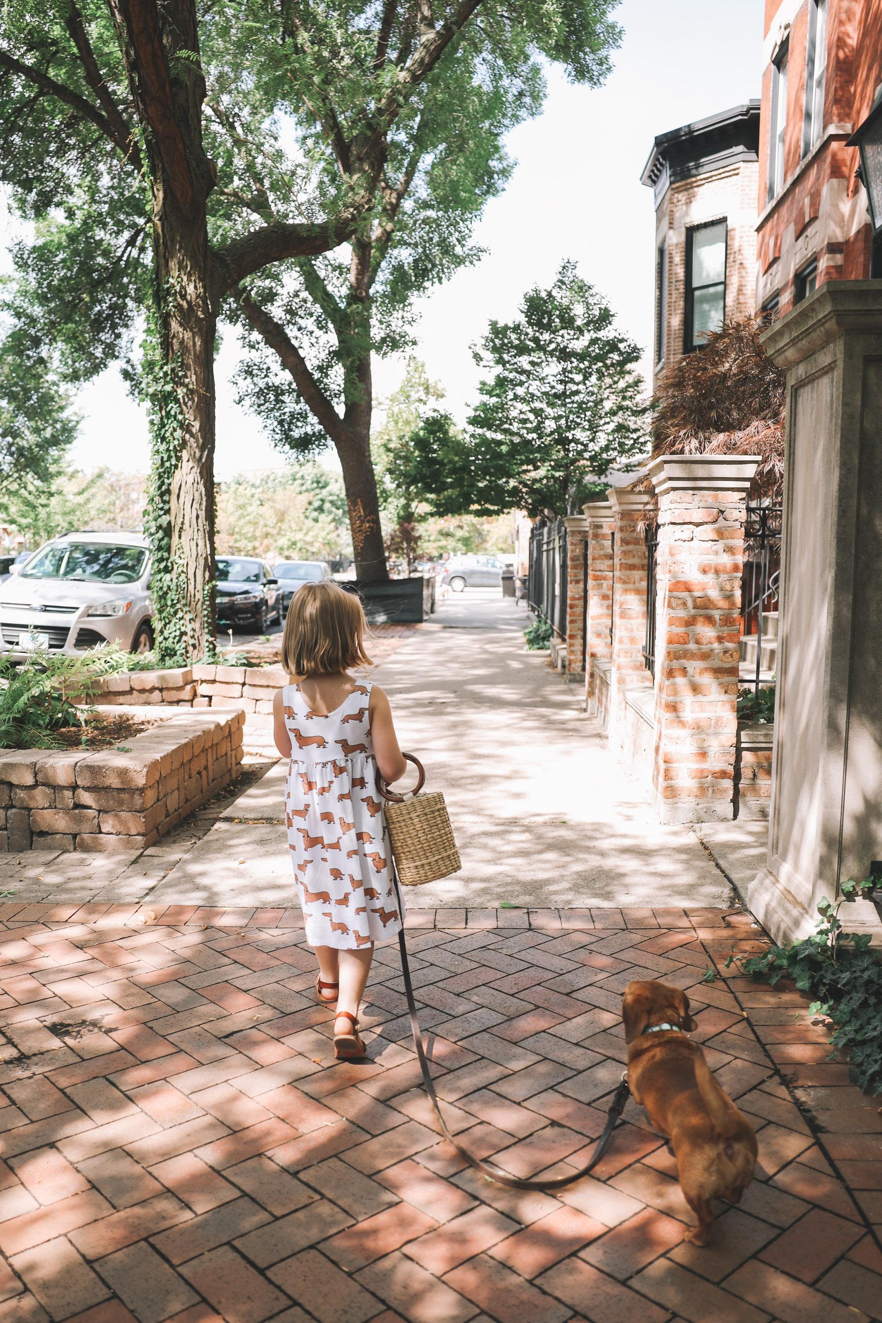 dachshund dress etsy