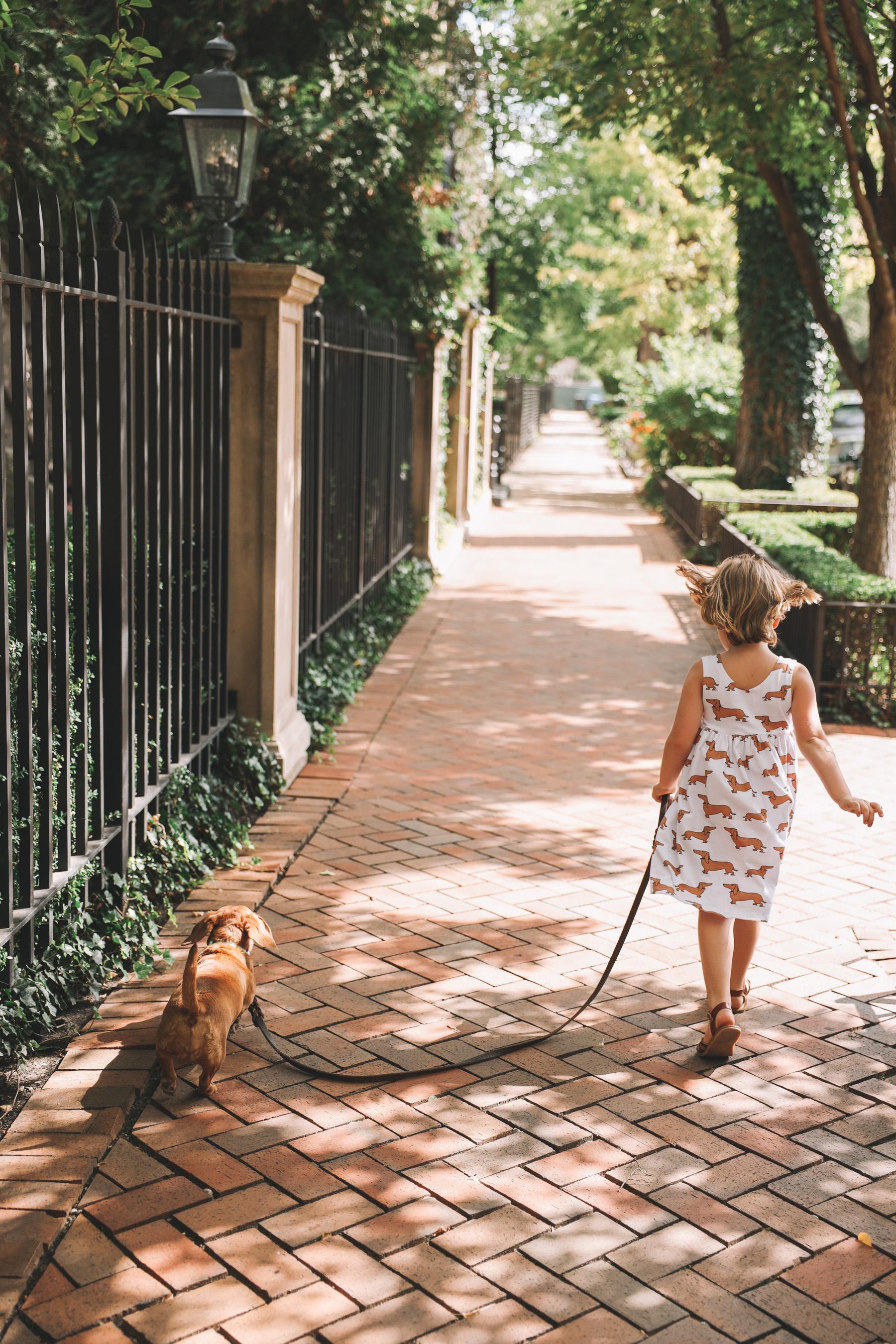 dachshund dress for kids etsy
