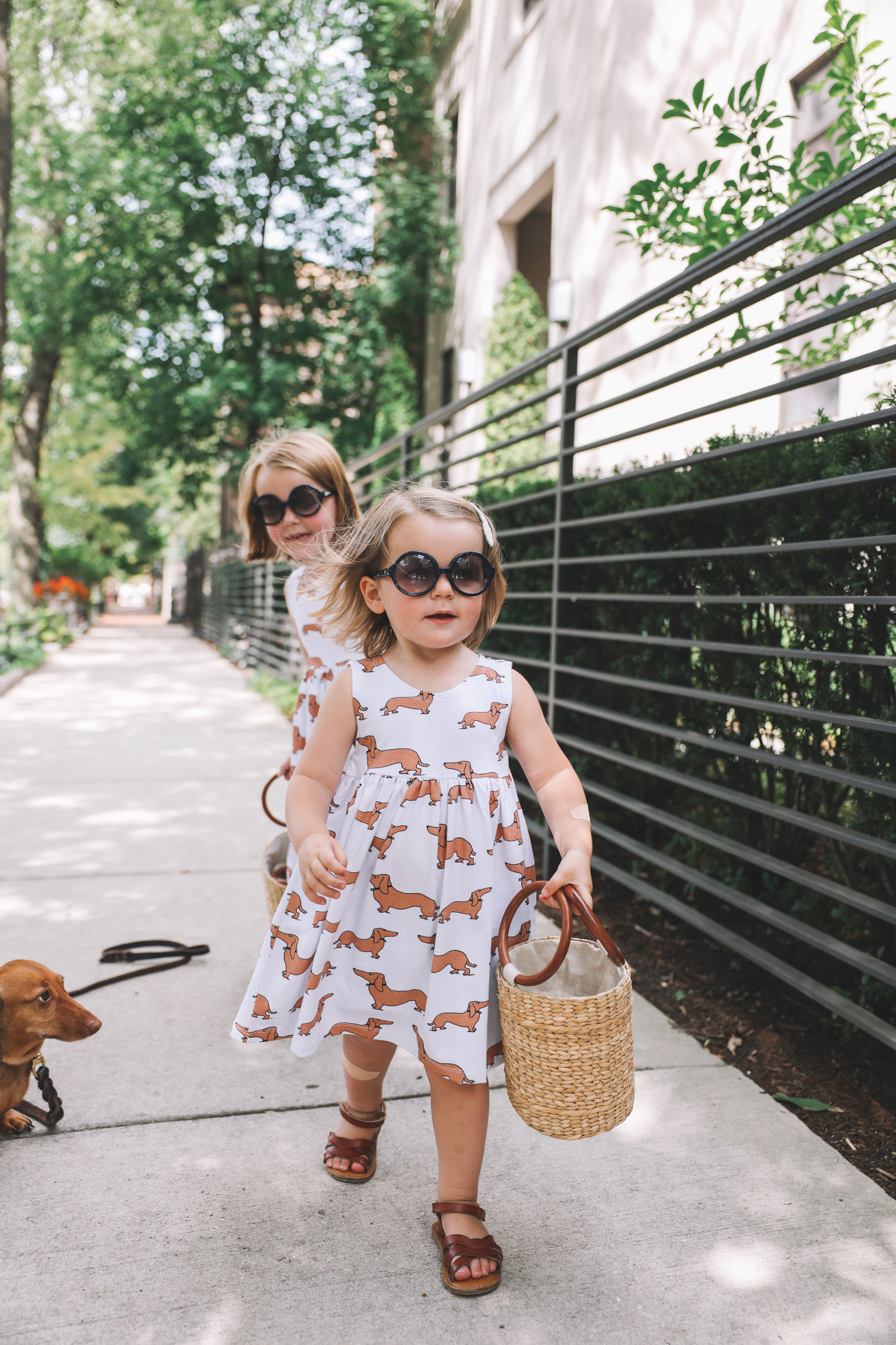dachshund print clothes for kids