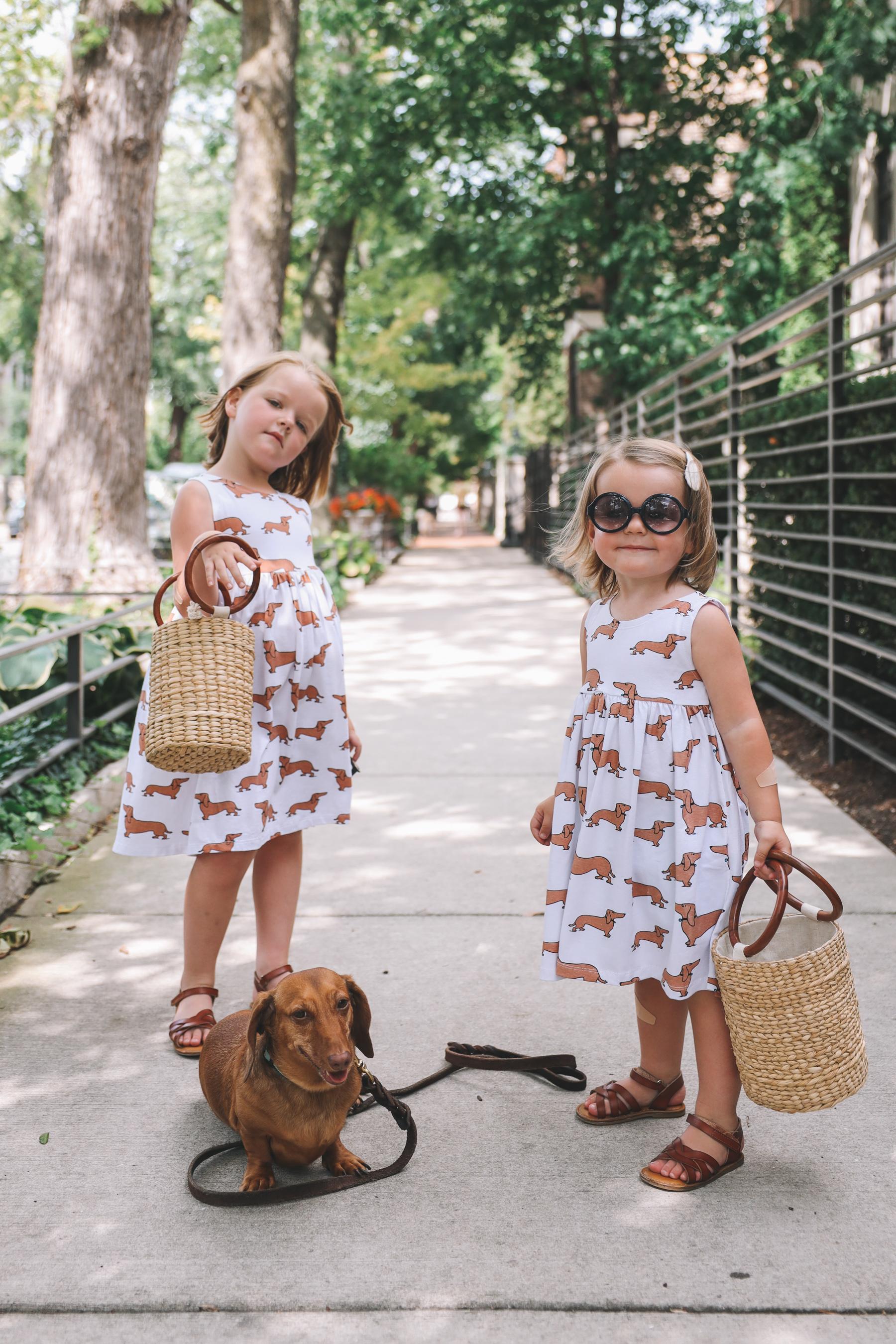 dachshund print dress etsy